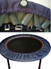 New Zealand lymphaciser rebounder quality compoent part for a perfect rebounder