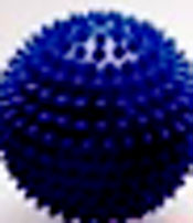 blue spikey massage hedgehog balls