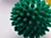 green spikey hedgehog balls